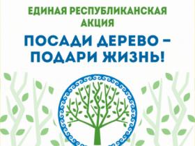 27 апреля 2019 года на территории городского поселения город Белебей будет проводиться республиканская акция по посадке деревьев «Зелёная Башкирия».